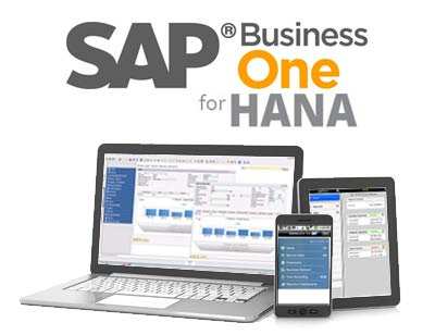 sap_business_one_hana_products-1